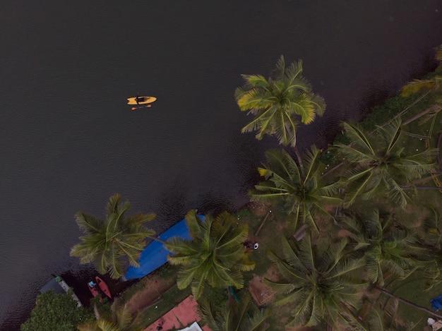 Toma aérea de barcos en la playa con palmeras