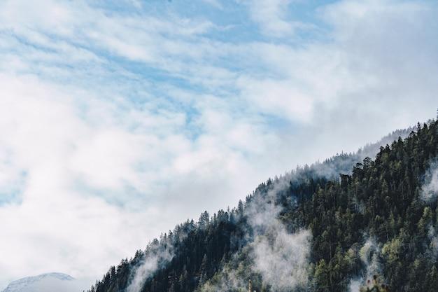 Toma aérea de un bosque en una colina alta con nubes y cielo azul