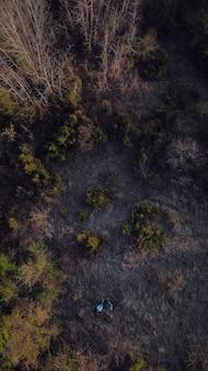 Toma aérea de un bosque con densos árboles - entorno verde