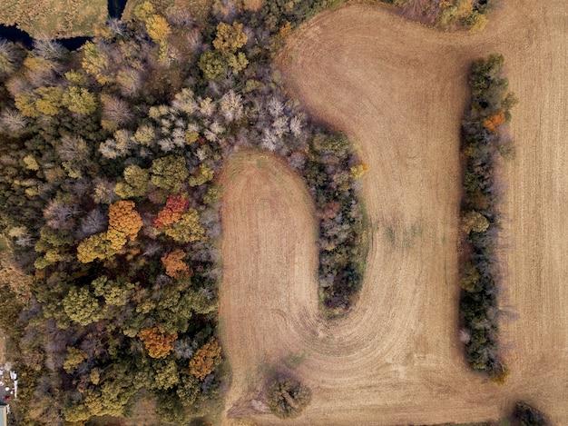 Toma aérea de un campo de hierba seca cerca de árboles de diferentes colores