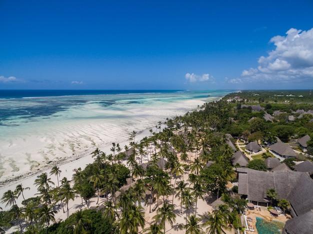 Toma aérea de casas por las palmeras en la playa por el océano capturado en zanzíbar, áfrica