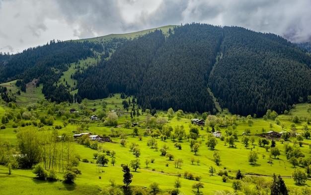 Toma aérea de las casas del pueblo en los hermosos campos cubiertos de hierba