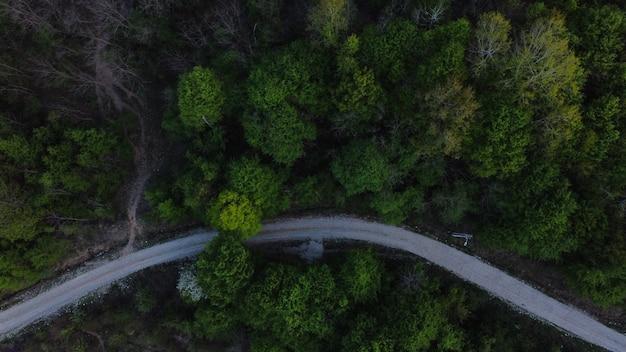 Toma aérea de un denso bosque con árboles verdes y una carretera - entorno verde