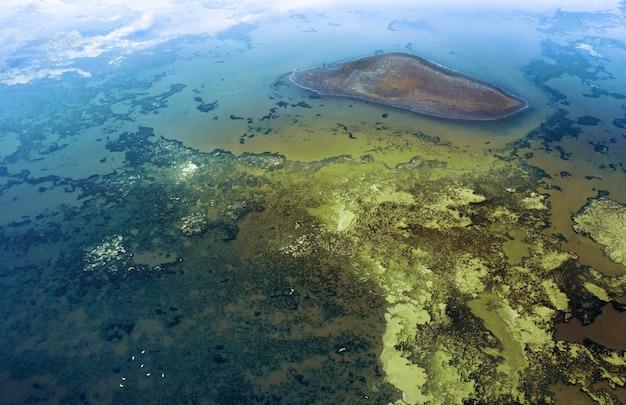Toma aérea de la floración de algas en un lago