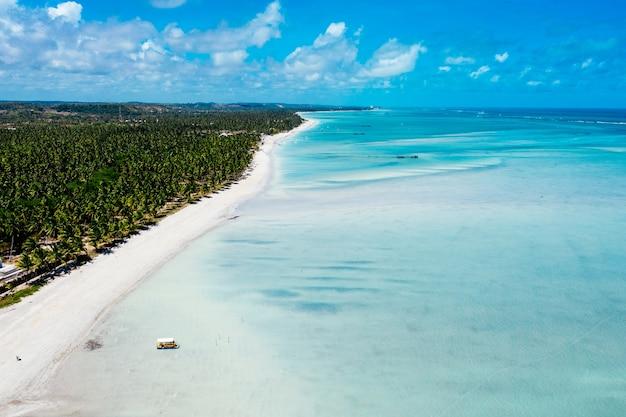 Toma aérea de un mar azul claro con una orilla boscosa y una playa al lado