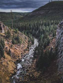 Toma aérea de un paisaje de montaña con un denso bosque y un río