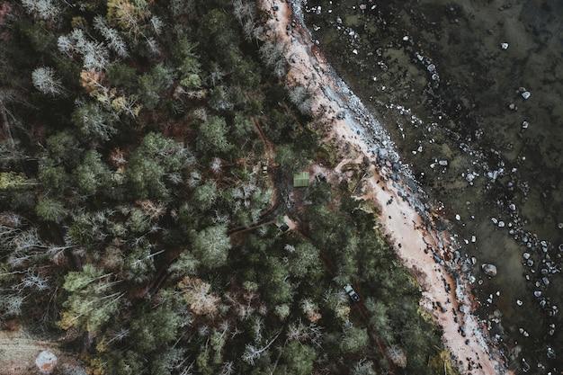 Toma aérea de un paisaje con muchos árboles y automóviles en una carretera