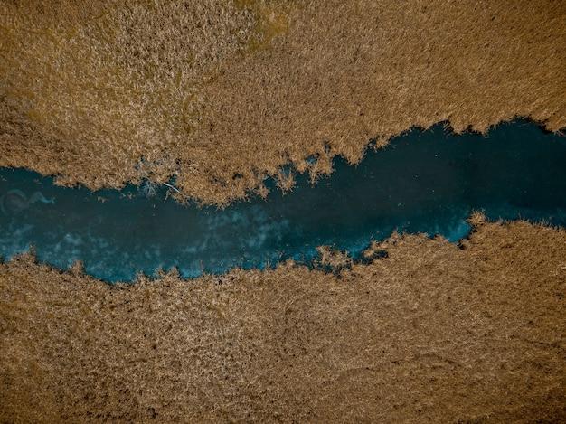 Toma aérea de un río en medio de árboles de hojas marrones