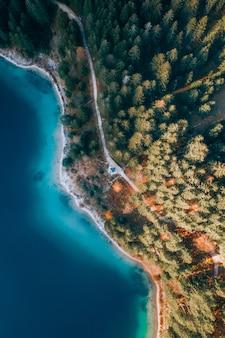 Toma aérea vertical de una orilla del océano llena de diferentes tipos de plantas