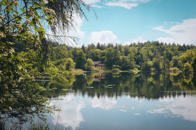 Toma panorámica de un hermoso lago rodeado de árboles verdes y una casa aislada bajo el cielo nublado