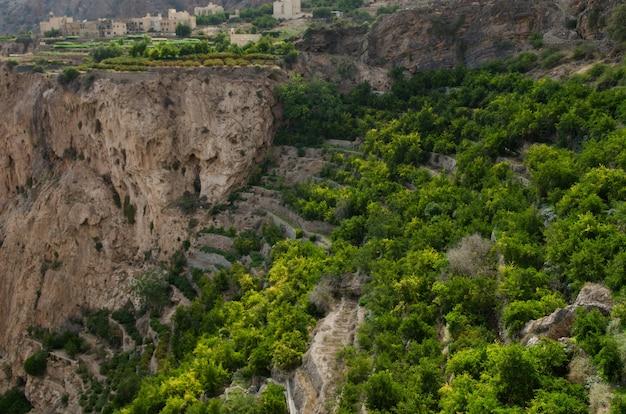 Toma a vista de pájaro de enormes y pintorescas montañas y acantilados parcialmente cubiertos de árboles verdes