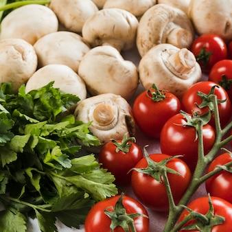 Tomates, champiñones y perejil fresco