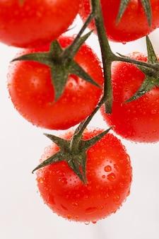 Tomates cherry frescos en una rama