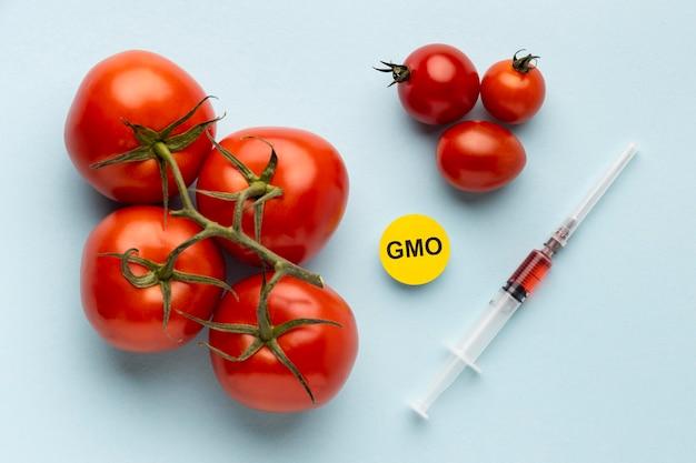 Tomates deliciosos alimentos modificados transgénicos