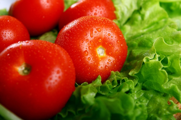 Tomates frescos y húmedos