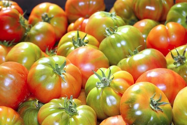 Tomates en el mercado de tomate tomate vegetal