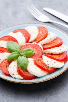 Tomates, queso mozzarella, albahaca y especias en pizarra de piedra pizarra gris