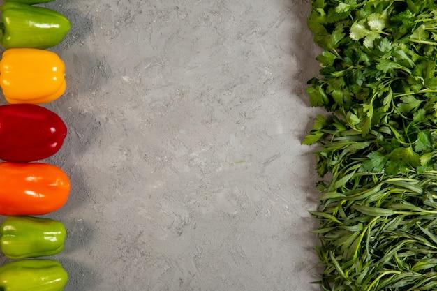 Top hierbas y vegetales frescos pimientos coloridos estragón y perejil con copia espacio en gris