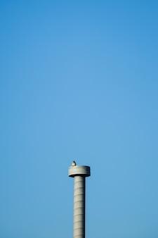 Torre de cemento con pájaro