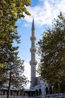 Torre y paredes de la mezquita del sultán ahmed visibles a través de los árboles verdes en estambul, turquía