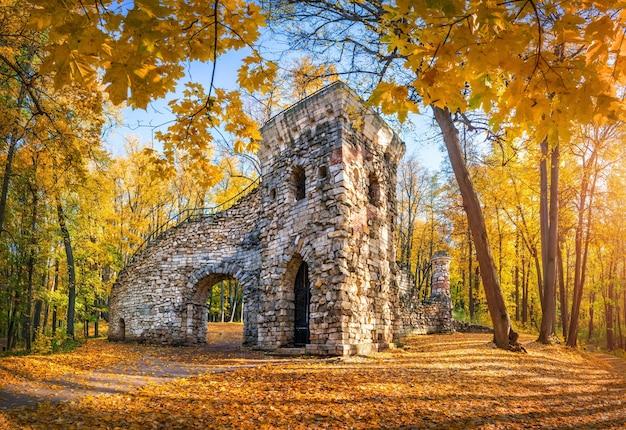 Torre de la ruina en el parque tsaritsyno en moscú entre árboles dorados del otoño en una mañana soleada temprano