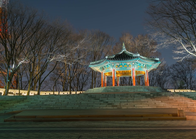 Torre de seúl hermosa arquitectura tradicional, montaña namsan en corea - impulso de procesamiento de color