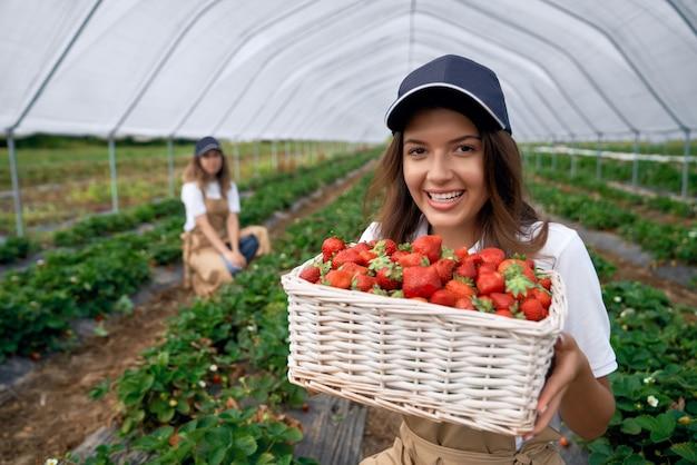Trabajador de campo sonriente sostiene una cesta de fresas