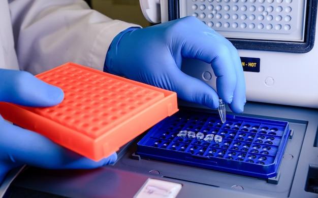 Un trabajador de laboratorio colocando puntas de pipeta en un recipiente azul para una prueba de coronavirus