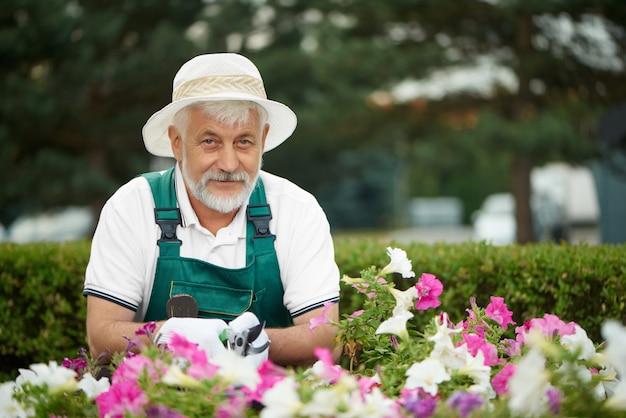 Trabajador mayor que corta la flor colorida en jardín.