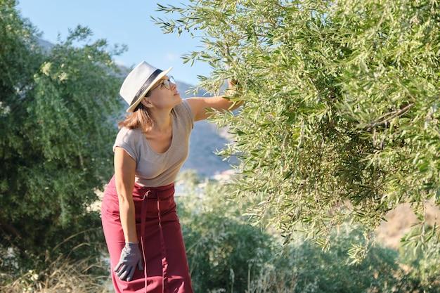 Trabajadora de una granja de olivos, fondo olivar en las montañas