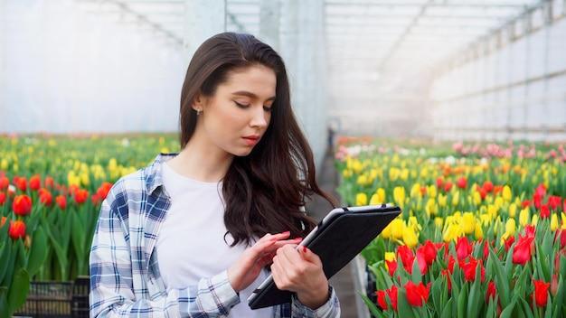 Una trabajadora de invernadero inspecciona tulipanes e ingresa datos en una tableta