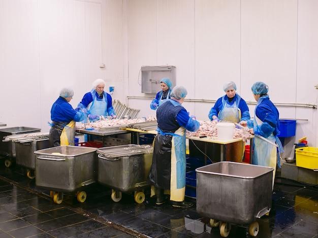 Trabajadores que trabajan en una planta de carne de pollo.