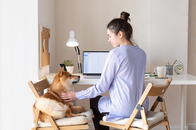 Trabajo a domicilio durante la cuarentena. pandemia de coronavirus. trabajo de oficina en casa con mujer y lindo perro shiba inu