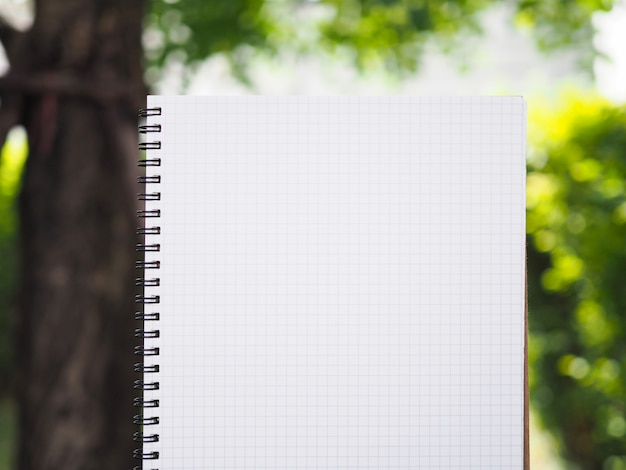 Trabajos de escritura entre la naturaleza en el jardín.