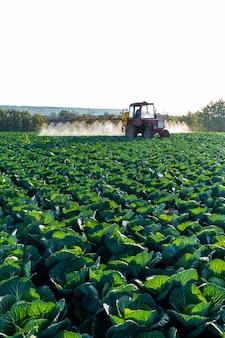 El tractor rocía productos químicos y pesticidas a un campo agrícola con vegetales