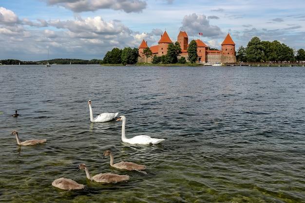 Trakai, lituania. vista del castillo de trakai en un día soleado, lago galve, lituania.