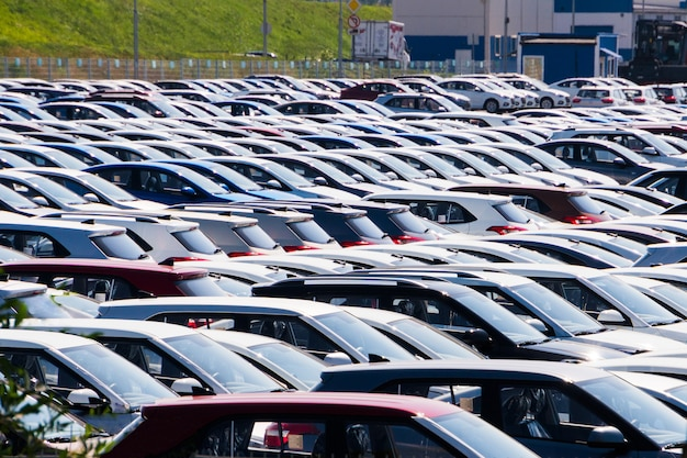 Trastero de estacionamiento de coches nuevos en alquiler. autos de diferentes clases y colores están en el estacionamiento.