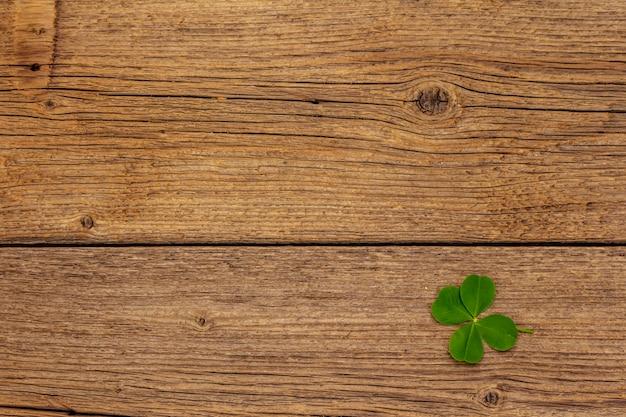 Trébol de cuatro hojas, planta fresca sobre tablas de madera vintage