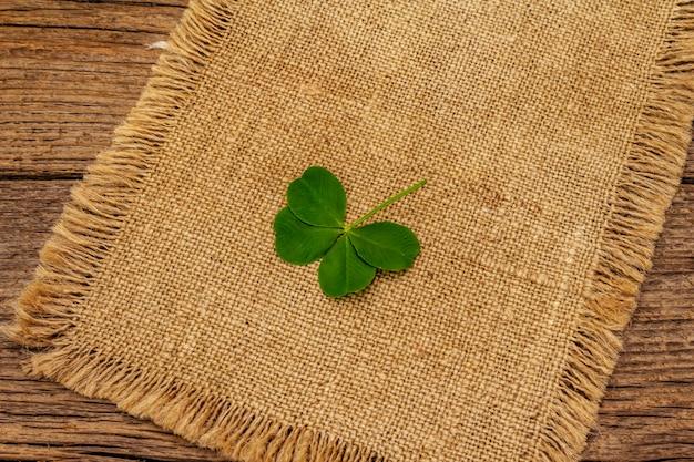 Trébol de cuatro hojas, planta fresca sobre tela de saco. símbolo de buena suerte, concepto del día de san patricio
