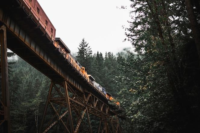 Tren de carga en el puente