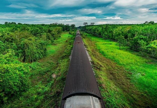 Tren en transporte ferroviario en bosque y color del atardecer