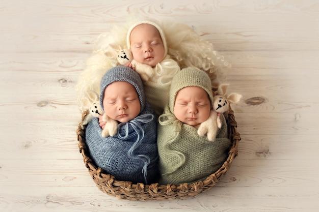 Tres hermanos recién nacidos en capullos de colores. foto de alta calidad