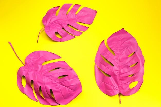 Tres hojas de palma tropical pintadas de monstera
