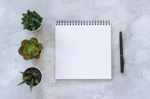 Tres suculentas y blanco abren el cuaderno en blanco, pluma en el fondo de mármol de la tabla.