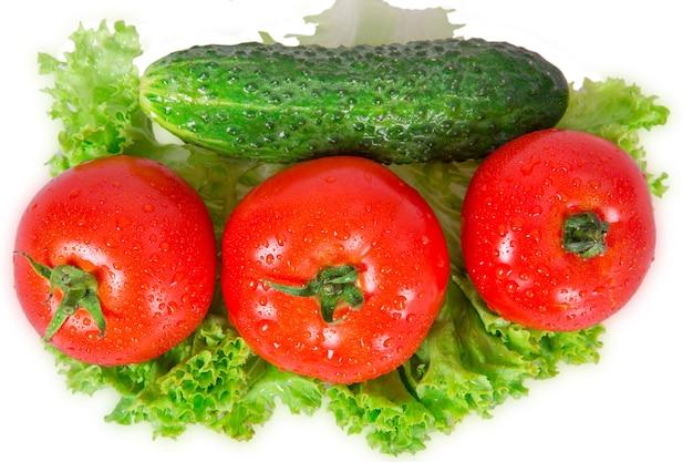 Tres tomates y pepino se encuentran en hojas de lechuga sobre un fondo blanco.