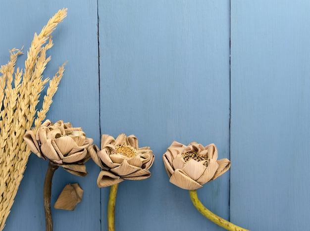 Triple secado lotus y gavillas secas de arroz en el fondo de madera azul