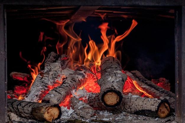 Troncos de abedul ardientes vivos en la chimenea en un frío día de invierno