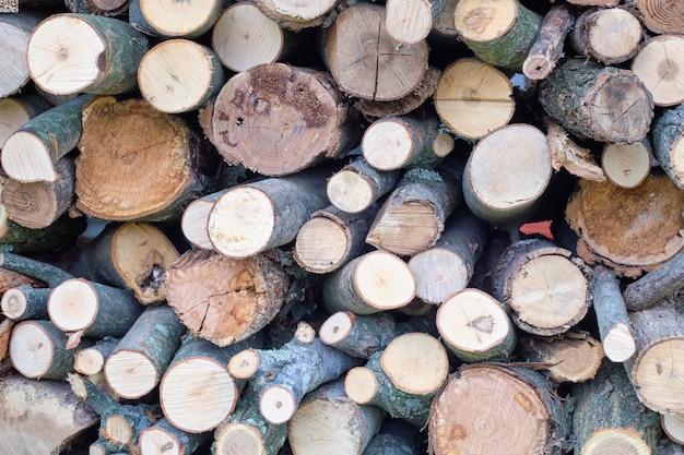 Troncos de árboles en rodajas uno encima del otro