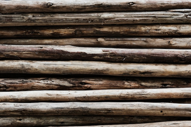 Troncos de madera beige con textura de fondo