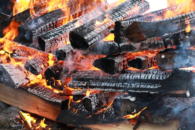 Troncos de madera secos arden con una llama brillante en el fuego
